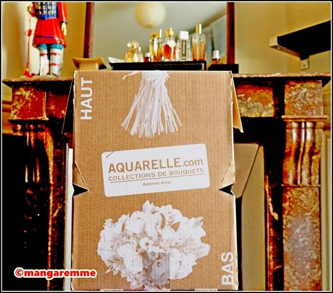 Livraison fleurs enterrement aquarelle pivoine etc for Aquarelle livraison fleurs