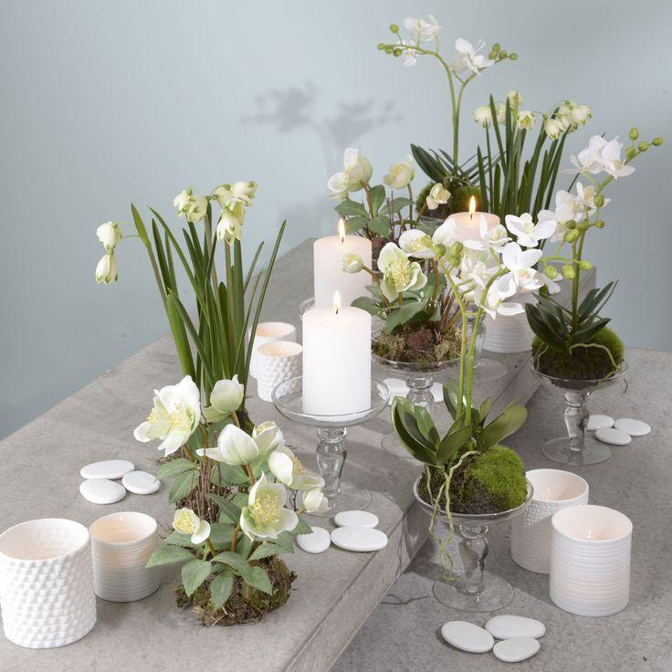 Composition florale hiver pivoine etc for Composition florale exterieur hiver
