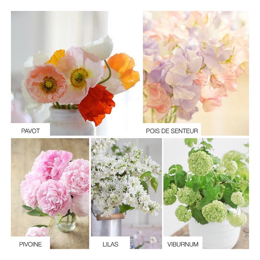fleurs mariage aout pivoine etc. Black Bedroom Furniture Sets. Home Design Ideas