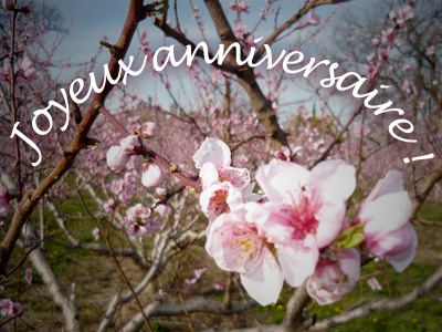 Bouquet de fleurs anniversaire gratuit - pivoine etc