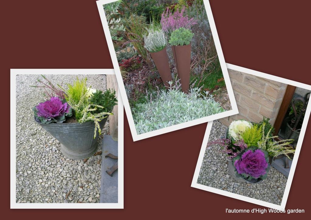 Jardini re d automne hiver pivoine etc for Jardiniere d hiver