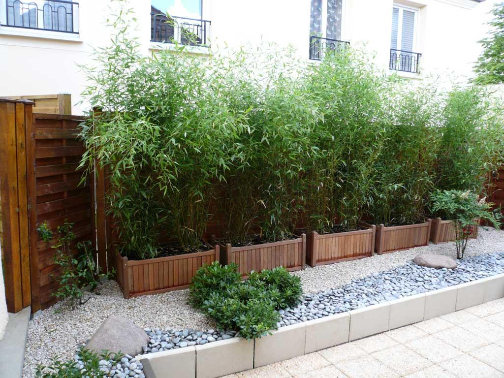 Planter des bambous dans un bac - pivoine etc
