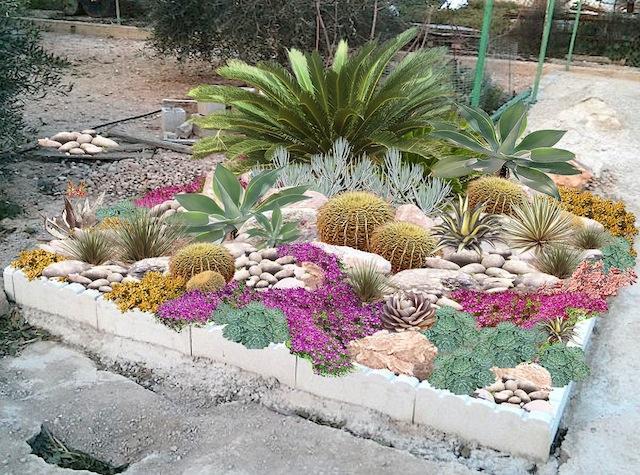 plantation cactus exterieur pivoine etc. Black Bedroom Furniture Sets. Home Design Ideas