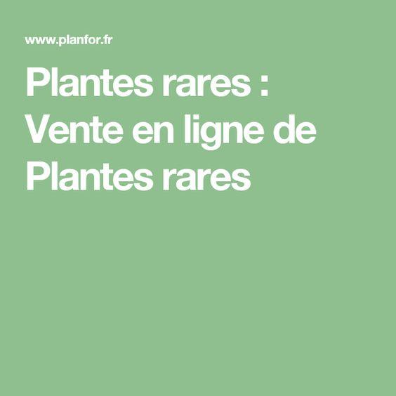 Plante rare vente en ligne pivoine etc for Acheter des plantes en ligne