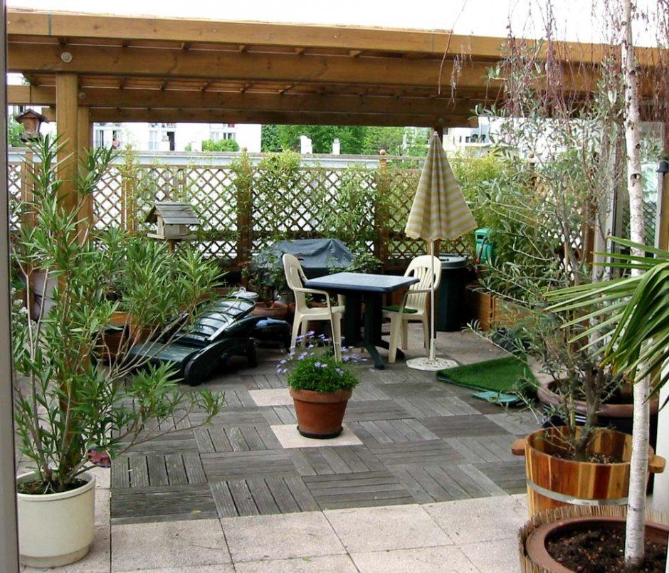 Plantes Pour Terrasses Exterieur D Appartement : Plante terrasse pivoine etc