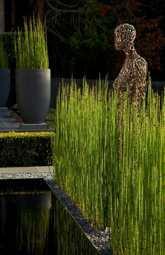 Bambou plante exterieur pivoine etc for Plante bambou exterieur prix