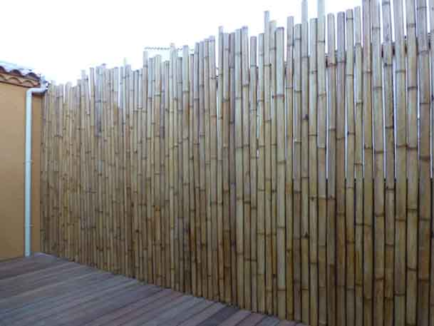 acheter du bambou pivoine etc. Black Bedroom Furniture Sets. Home Design Ideas