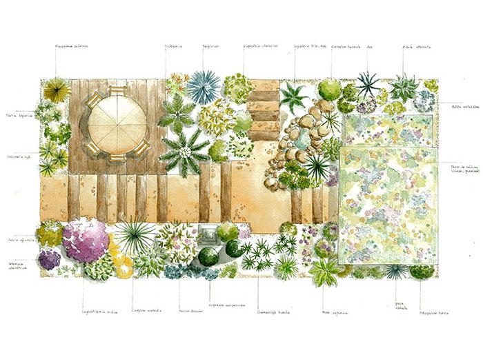 plan jardin exotique pivoine etc. Black Bedroom Furniture Sets. Home Design Ideas