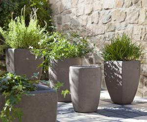 Plante Sud Pot Pierre Decoratif