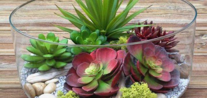plante zen gallery of quelles plantes pour jardin zen jardin japonais quelles plantes et arbres. Black Bedroom Furniture Sets. Home Design Ideas