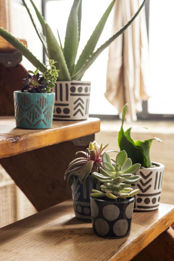 plante grasse deco pivoine etc. Black Bedroom Furniture Sets. Home Design Ideas