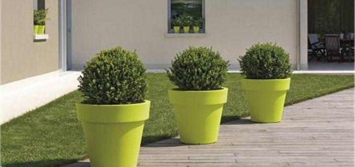 Pots pour plantes d ext rieur pivoine etc for Plantes pour pots exterieur