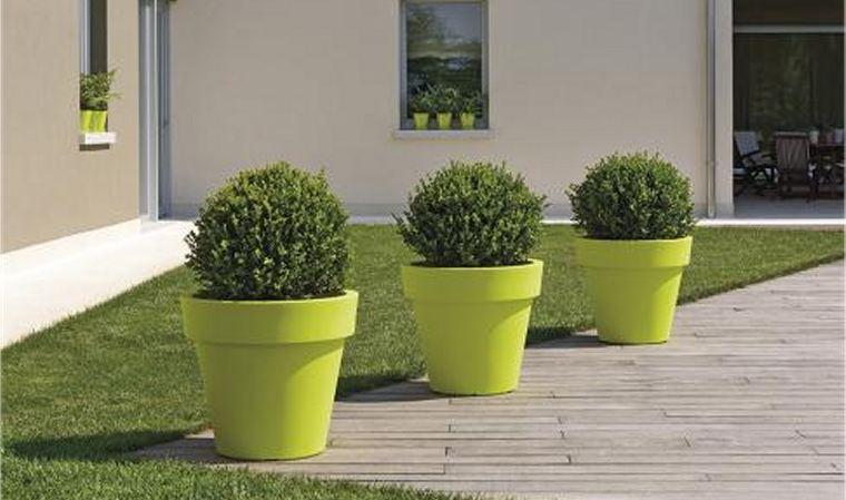 Pots pour plantes d ext rieur pivoine etc - Fleur d hiver exterieur ...