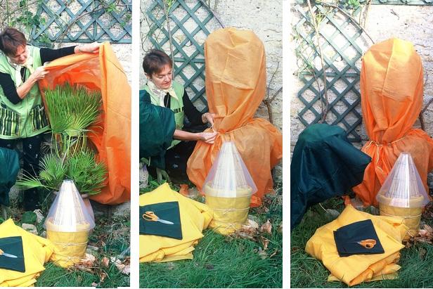 Comment proteger les plantes en hiver pivoine etc for Couvrir les plantes en hiver