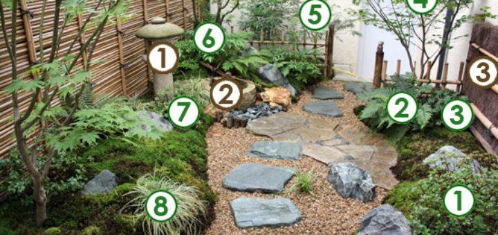 Plante japonaise exterieur pivoine etc for Plante japonaise pour jardin