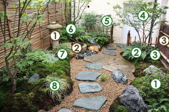 Plante japonaise exterieur pivoine etc for Plantes japonaises exterieur