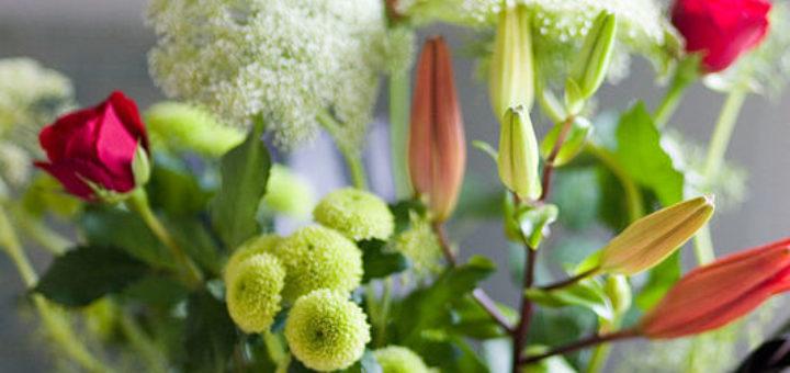 Fleurs internet pivoine etc for Fleurs internet