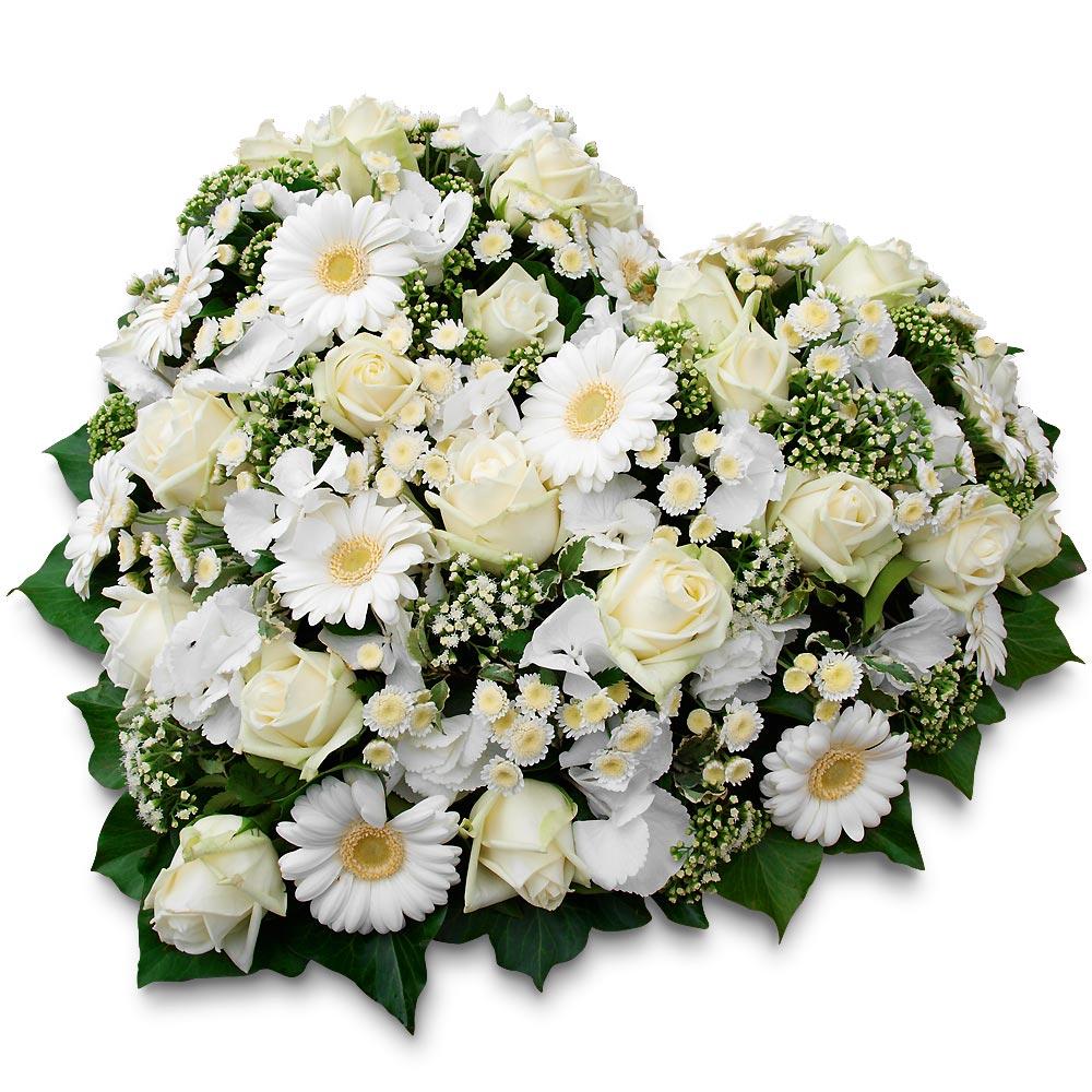 Fleurs a envoyer pour deces pivoine etc for Envoie de fleurs pas cher