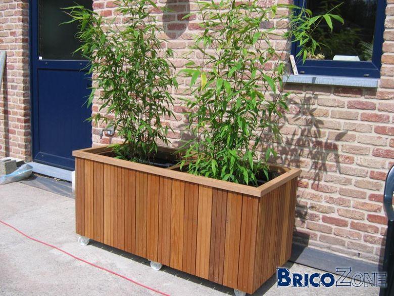 Bac Rectangulaire Pour Bambou : bac a bambou pivoine etc ~ Nature-et-papiers.com Idées de Décoration