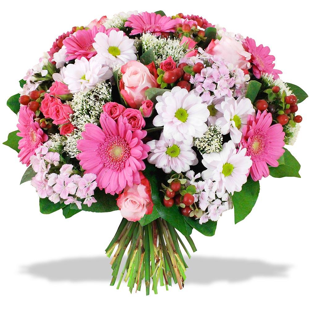 Livraison fleurs martinique domicile pivoine etc for Livraison de fleurs rapide