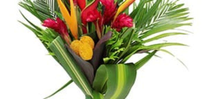 Envoi fleurs exotiques pivoine etc for Envoi fleurs
