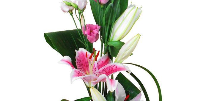 composition bouquet de fleurs pivoine etc. Black Bedroom Furniture Sets. Home Design Ideas
