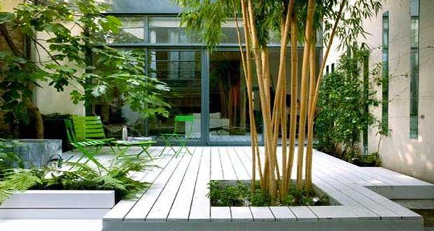 planter un jardin pivoine etc. Black Bedroom Furniture Sets. Home Design Ideas